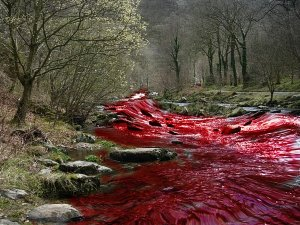 River_of_blood_by_TheDevilWearsSkirts